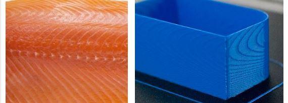 salmon skin